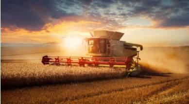 Savills Global Farmland Index: Das Geld liegt auf dem Acker